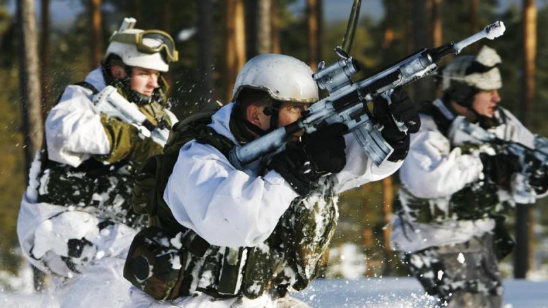 Nordic Alliance:  Mini-NATO or Polar Fog?
