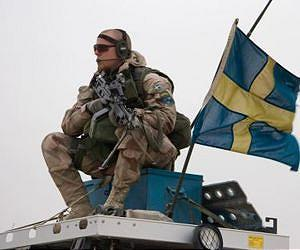 Royal academy doubts Sweden's ability to defend itself