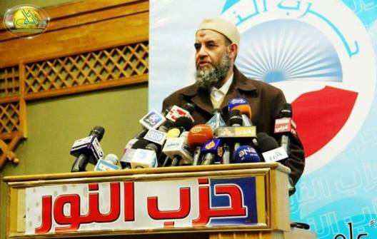 The Nour Party's Gamble on the Interim Government