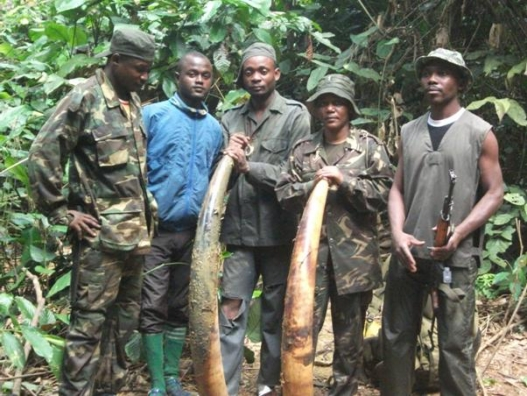Poaching Peace and Security