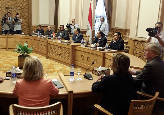 Egypt Elections: Preliminary Statements by Two International Observation Missions