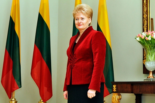 Lithuania's President: 'Russia is Terrorizing Its Neighbors'