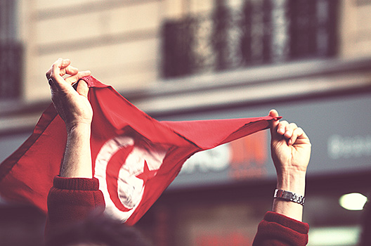 Tunisia: From elected government to effective governance