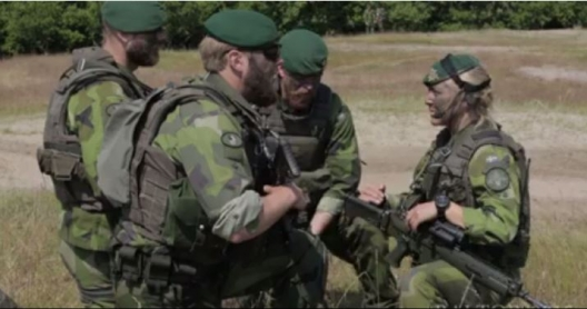 Swedish Marines participating in BALTOPS exercise with NATO units, June 17, 2015