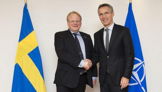 Swedish Defense Minister Peter Hultqvist and Secretary General Jens Stoltenberg, Nov. 18, 2014