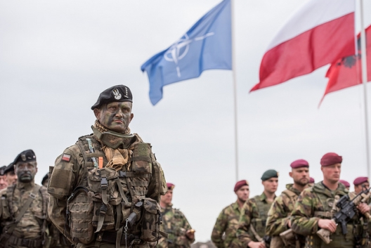Polish soldier in NATO's Noble Jump exercise, June 18, 2015