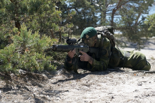Swedish Military Told to Look Out for Foreign Spies