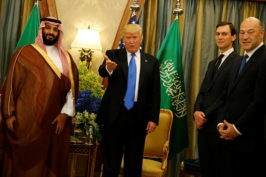 Expert Commentary on the Appointment of Mohammed bin Salman as Saudi's New Crown Prince
