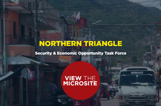 Northern Triangle Security and Economic Opportunity Task Force