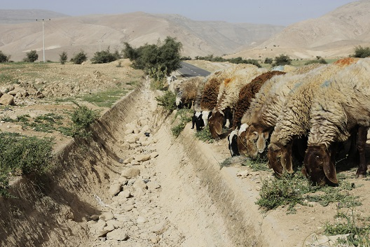 How climate change could exacerbate conflict in the Middle East