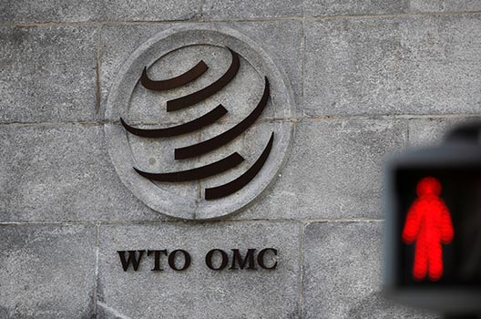 WTO Deputy Director-General Wolff: The United States seeks to change the WTO