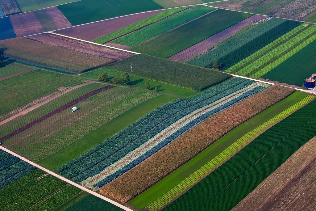 gtc growing food landscape