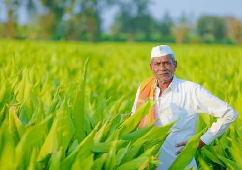 The hard work ahead in improving US-India agricultural trade