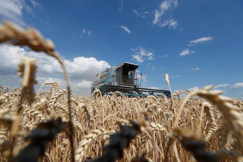 Ukraine poised for historic land market breakthrough