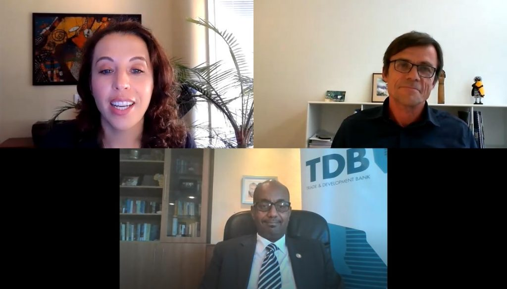 De-risking and transforming institutional capital for impact in Africa: A conversation with Admassu Tadesse and Morten Elkjær