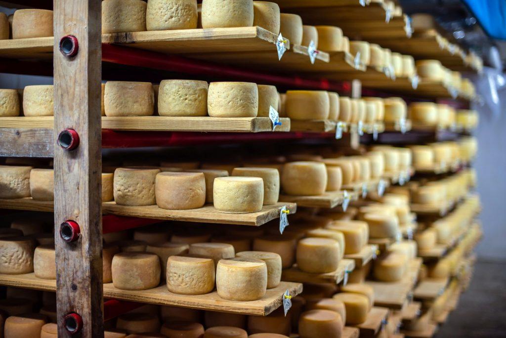 How village cheese is bringing Ukraine closer to Europe